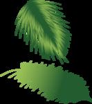 пальма2а.png