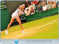 http://img-fotki.yandex.ru/get/5806/13966776.fe/0_87f2e_8277ca85_orig.jpg