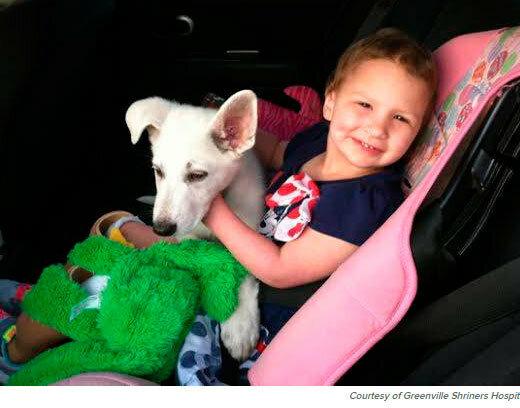 девочка инвалид и собака