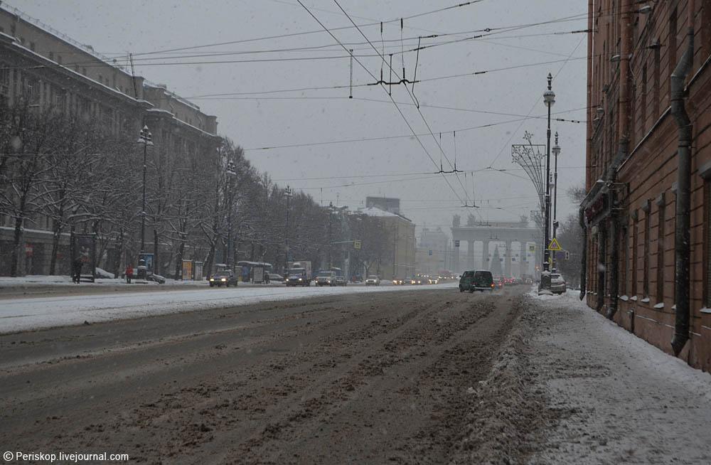 Periskop питерская зима и красная икра