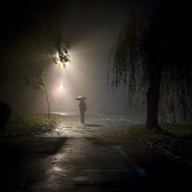 листья фото парень идет ночью в дождь захоронения