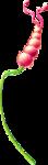 «ldavi-wildwatermelonparty-wildmelongate»  0_6997a_430a786f_S
