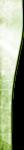 element46.png