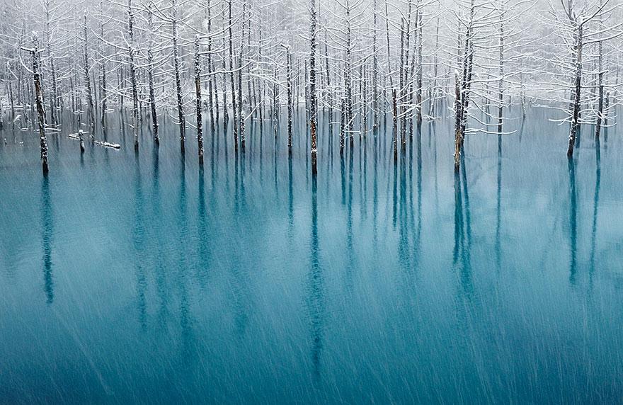 Невероятные фотографии природы, сделанные без использования Photoshop 0 1432c4 28ce5ed9 orig