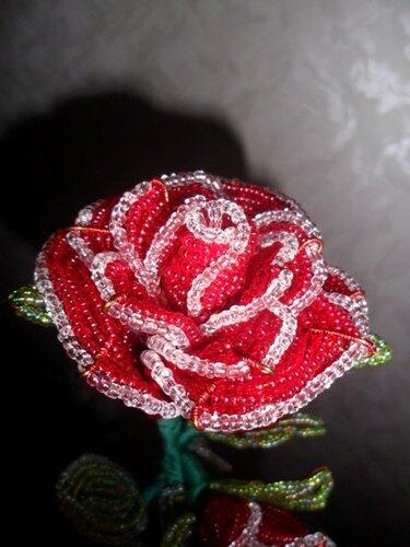 А вот бисерные розы, которые я делала.  Простите, что со знаком сайта.