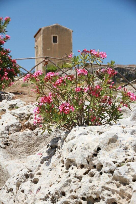 Sicilia, Siracusa, Neapolis