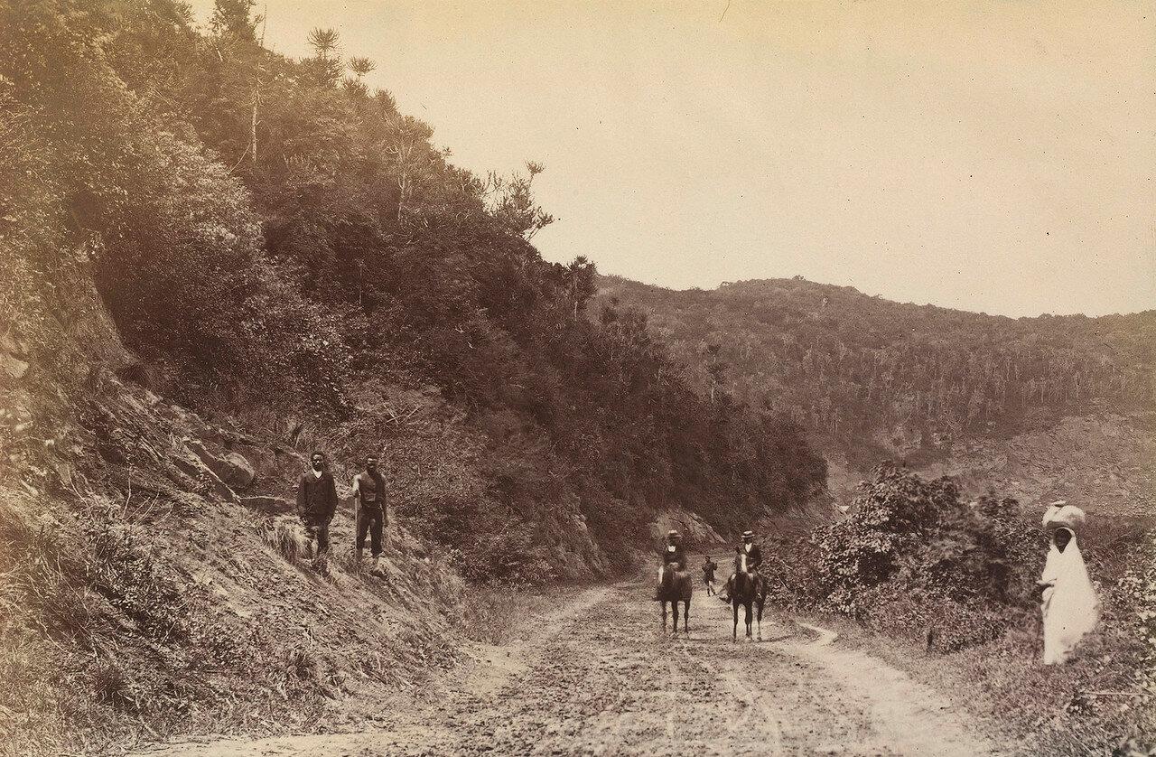 Верулани-роуд, недалеко от реки Умгени