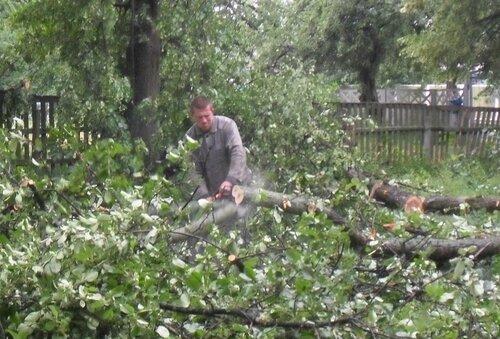 У дитсадку вітер повали дерева.У неділю надвечір над Чернігівщиною пронісся грозовий фронт  – пориви вітру сягали 15 – 20 метрів за секунду