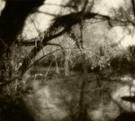 Фото Мария Строганова. Rolleiflex SLX, монокль 70 мм