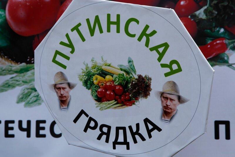 Грядки Путина