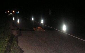 В Приморье разыскивается водитель, сбивший мужчину