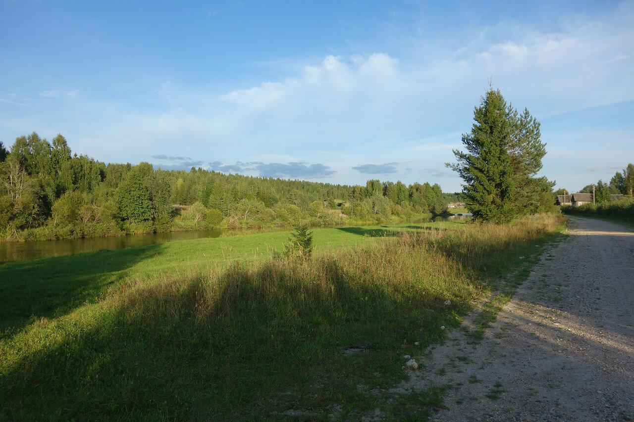 р. Кема и хвойный лес