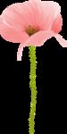 NLD Addon Poppy 2.png