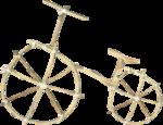 NLD Bike (2).png