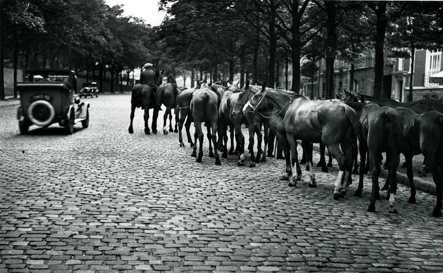 19 Près de la porte de Vanves, 1926 Photo André Kertész.jpg