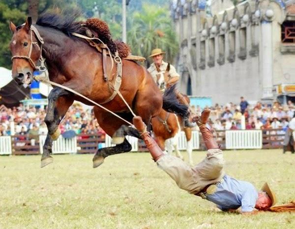 Радостные фотографии прыгающих людей и животных 0 130937 65ae31e3 orig