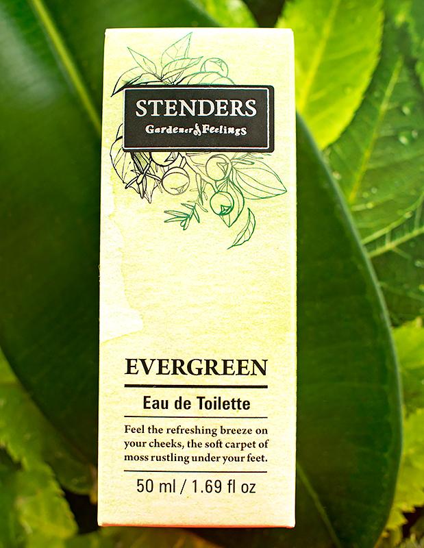 туалетная-вода-stenders-evergreen-отзыв2.jpg