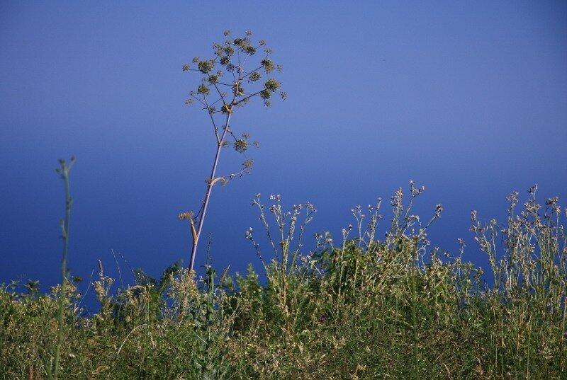 остров Искья: от источников до вулкана