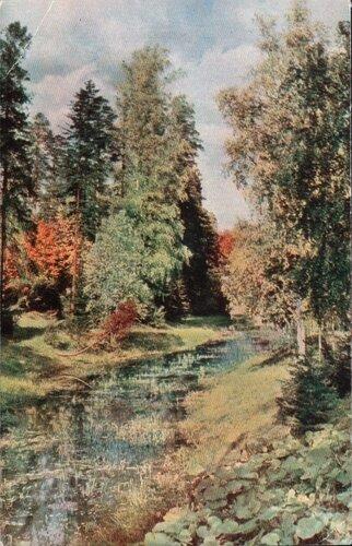 Павловск. 1965. Старосильвийский пруд