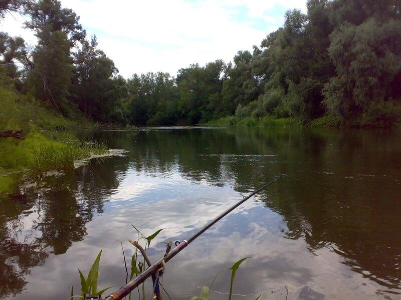 рыбалка в кинельском р-не самарской обл