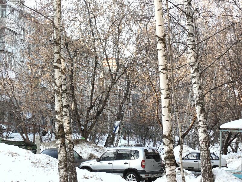 https://img-fotki.yandex.ru/get/5809/130932895.e/0_edc4f_4556397_XL.jpg