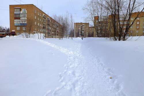 Фото города Инта №7495   18.02.2015_14:48