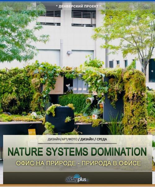 Natural Systems Domination - природа, вторгнувшаяся в офис