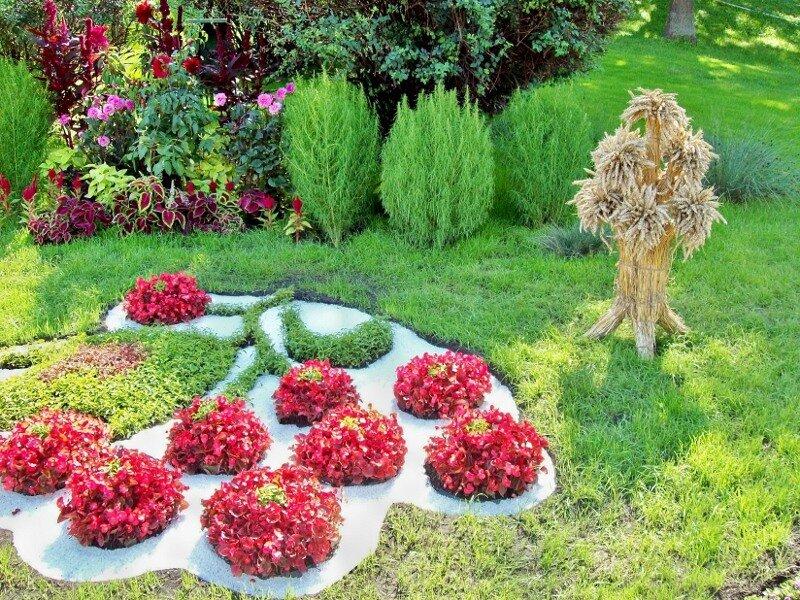 Киев. Колосья на выставке цветов 2011