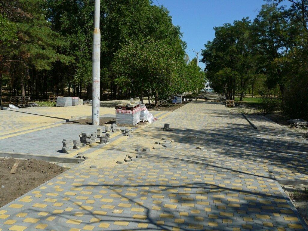 Сисястую в городском парке 28 фотография