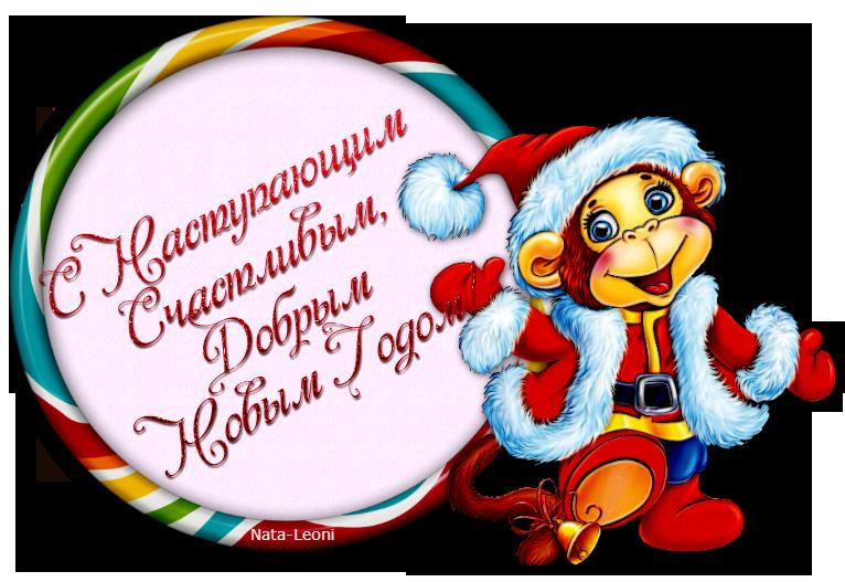 С Годом Обезьяны!