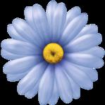 nb_d_flower3.png