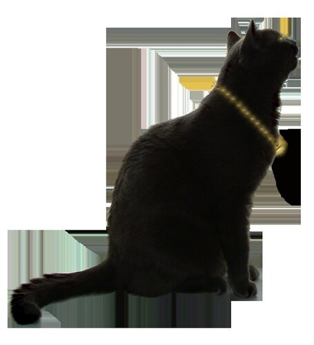 Tubes chats - série 07