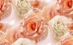 blooms7_1 (13).jpg