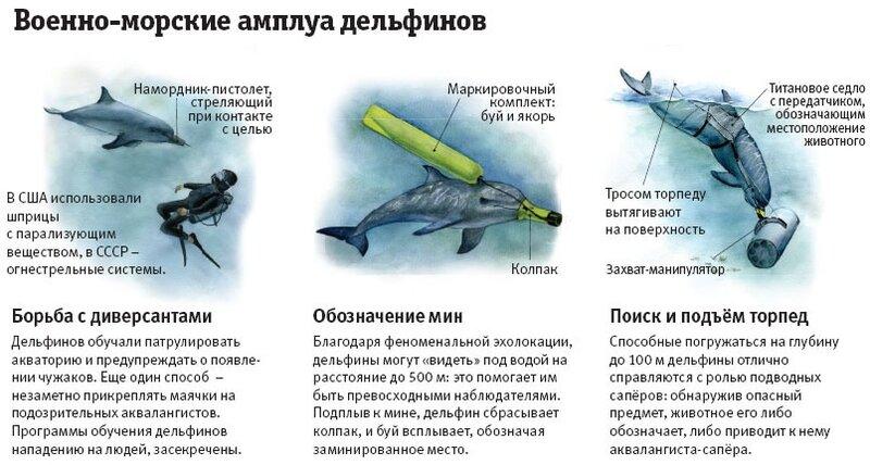 http://img-fotki.yandex.ru/get/5810/104877261.4e/0_6d3ac_5820989f_XL.jpg