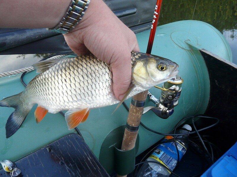 как ловить с помощью пластиковой бутылки рыбу