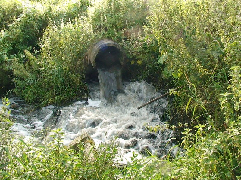 Сброс канализационных вод города Апрелевка (МО) в реку Десну в районе села Мартемьяново. Очистные сооружения работают ненадлежаще.