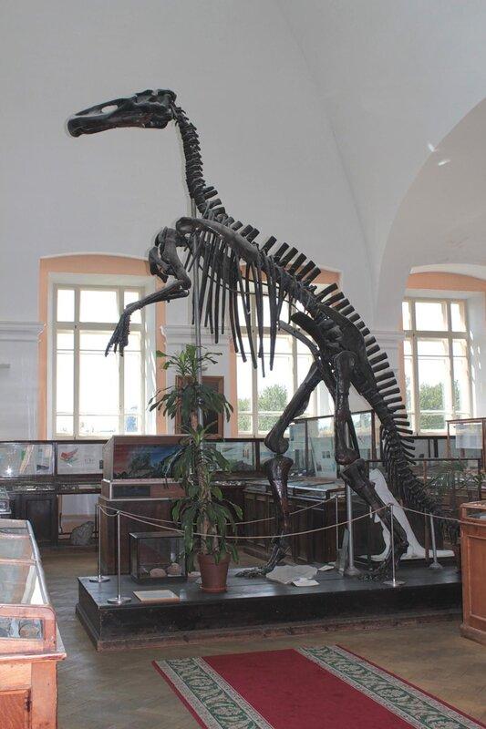 Амурский манджурозавр Рябинина