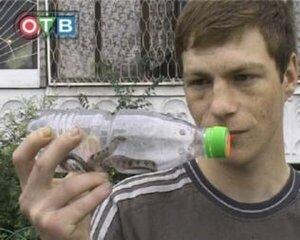 Смертельно ядовитый тигровый уж пойман во Владивостоке