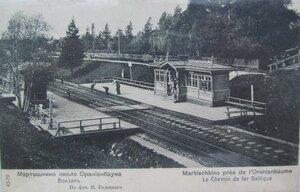 Мартышкино. Вокзал