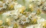 blooms7_1 (9).jpg