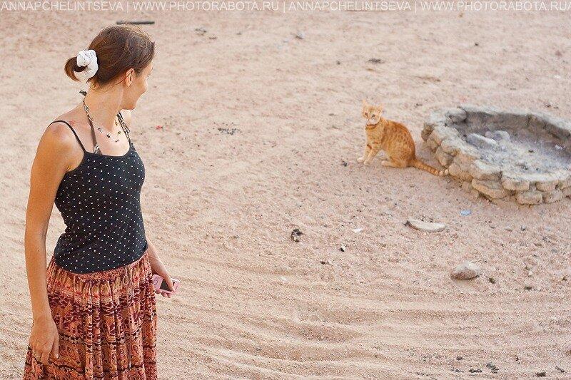 Дахаб, Синай, Египет, дайвинг