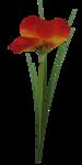 florju_tropicalsea_elmt (20).png