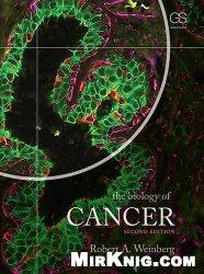 Книга The Biology of Cancer (2nd ed.)