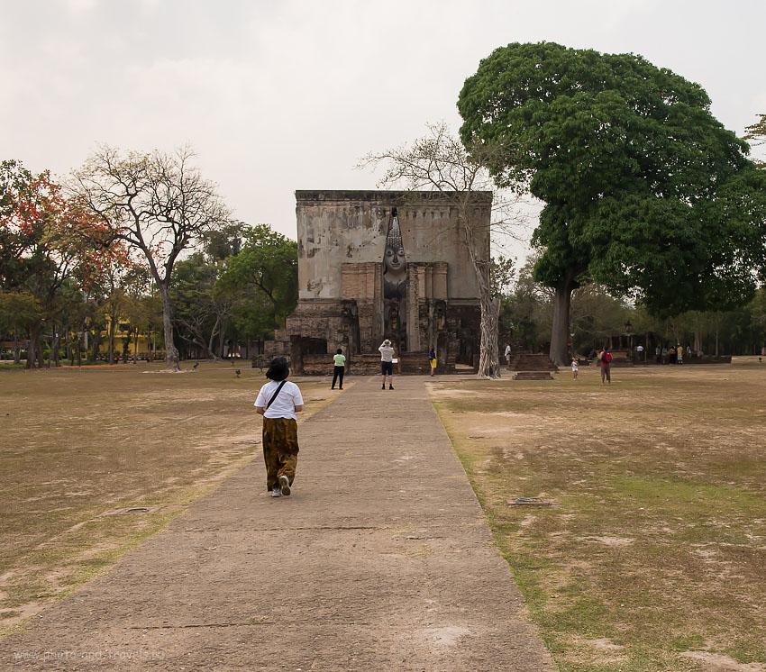 Снимок 23. Лужайка в парке Sukhothai Historical Park. Отзывы туристов о поездке по Таиланду дикарями