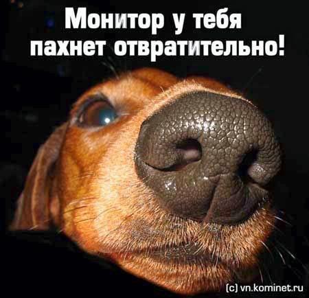 prikoly_shutki-040(dlp.by).jpg