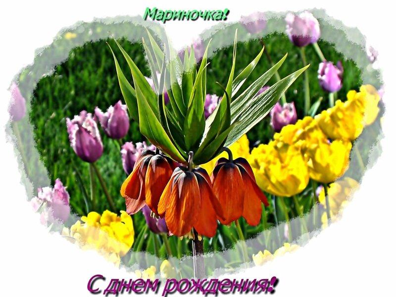 http://img-fotki.yandex.ru/get/5811/54123332.2a/0_60e95_c61fd829_XL.jpg
