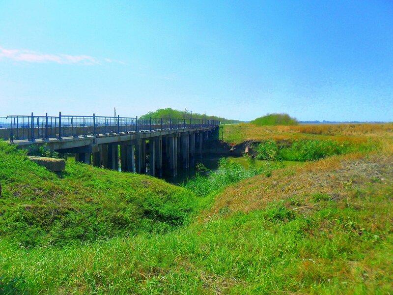 На берегах канала, у моста ... SAM_3541.JPG
