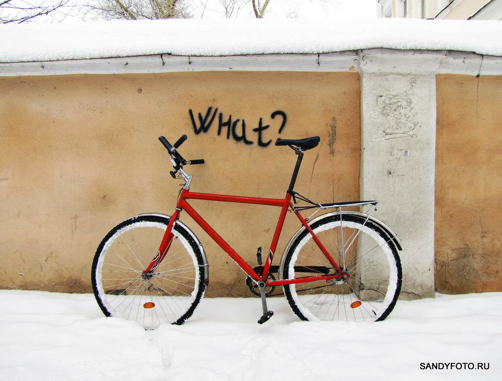 20000 километров моему велосипеду