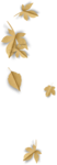natali_design_apple_leaves11-sh.png