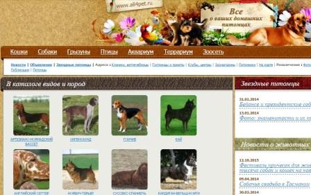 10. Домашние животные.jpg